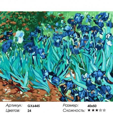 GX6445 Ирисы (Ван Гог) Раскраска по номерам на холсте ...