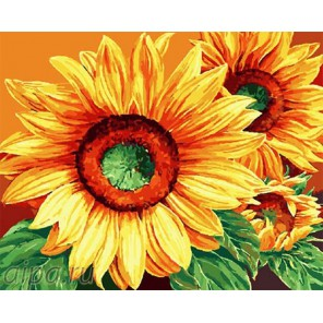 Солнечные подсолнухи Раскраска по номерам на холсте GX9572