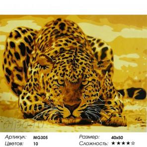 Количество цветов и сложность Леопард Раскраска по номерам на холсте Menglei