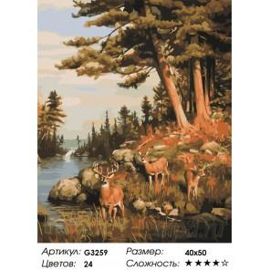 Количество цветов и сложность  Олени на водопое Раскраска картина по номерам на холсте MG3259