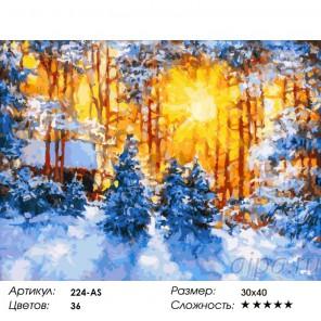 Сложность и количество красок  Февраль Раскраска картина по номерам на холсте 224-AS