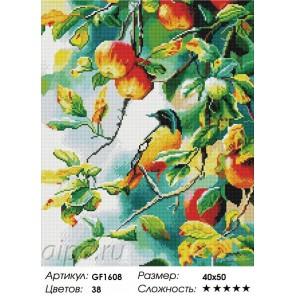 Сложность и количество цветов  Птичка на яблоне Алмазная мозаика на подрамнике GF1608
