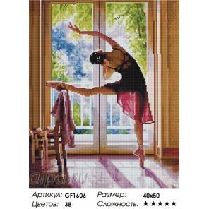 Сложность и количество цветов Балерина Алмазная мозаика на подрамнике GF1606