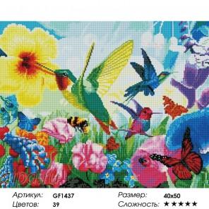 Сложность и количество цветов Солнечные колибри Алмазная мозаика на подрамнике GF1437