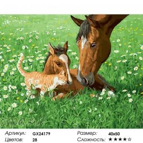 Сложность и количество цветов  Забота и нежность Раскраска картина по номерам на холсте GX24179