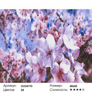 Сложность и количество цветов  Яблони в цвету Раскраска картина по номерам на холсте GX24193