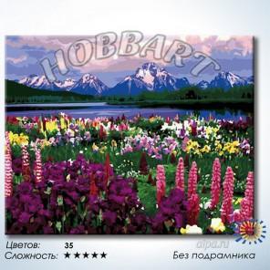 Количество цветов и сложность Долина цветов Раскраска по номерам на холсте Hobbart