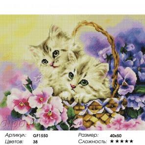 Сложность и количество цветов Милые котята Алмазная мозаика на подрамнике GF1550