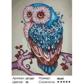 Сложность и количество цветов Совушка Алмазная мозаика на подрамнике GF1207