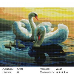 Сложность и количество цветов Лебеди на озере Алмазная мозаика на подрамнике GF257