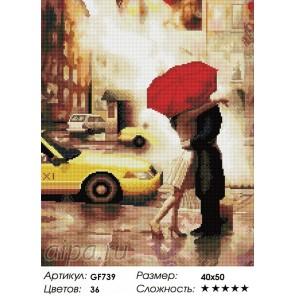 Сложность и количество цветов  Под зонтом Алмазная мозаика на подрамнике GF739