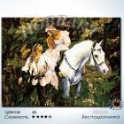 Количество цветов и сложность На белом коне Раскраска по номерам на холсте Hobbart