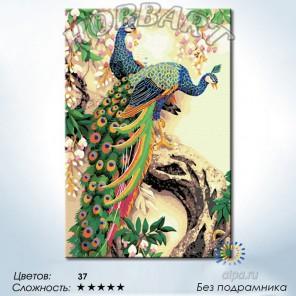 Количество цветов и сложность Символ красоты и достоинства Раскраска по номерам на холсте Hobbart