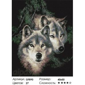 Сложность и количество цветов Два волка Алмазная мозаика на подрамнике GF890