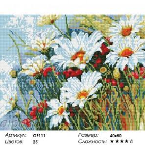 Сложность и количество цветов Ромашковое поле Алмазная мозаика на подрамнике GF111