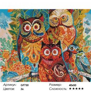 Сложность и количество цветов Разноцветные совушки Алмазная мозаика на подрамнике GF730