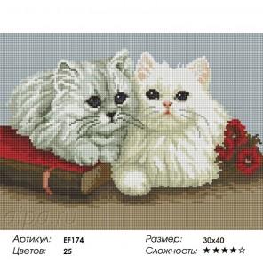 Сложность и количество цветов Пушистые котята Алмазная мозаика на подрамнике EF174