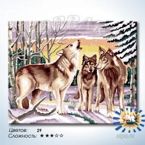 Количество цветов и сложность Совет волков Раскраска по номерам на холсте Hobbart HB4050275-LITE