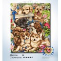 Количество цветов и сложность Любимые щенята Раскраска по номерам на холсте Hobbart HB4050302-LITE