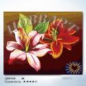 Количество цветов и сложность Две лилии Раскраска по номерам на холсте Hobbart HB4050071