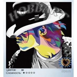 Количество цветов и сложность Майкл Джексон Раскраска по номерам на холсте Hobbart HB4040029