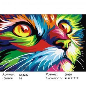 Сложность и количество цветов  Радужный кот Раскраска по номерам на холсте CX3220