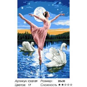 Танец с лебедями Раскраска по номерам на холсте