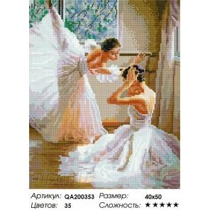 Сложность и количество цветов Балерины Алмазная мозаика на подрамнике QA200353