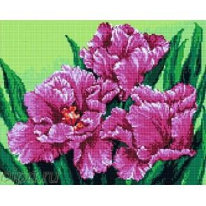 Розовые тюльпаны Алмазная мозаика на подрамнике
