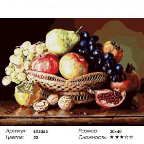 Сложность и количество цветов  Фруктово-ореховый натюрморт Раскраска по номерам на холсте EX5353