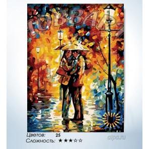 Количество цветов и сложность Любовь под дождем Раскраска по номерам на холсте Hobbart HB3040087-LITE