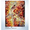 Количество цветов и сложность Балерина Раскраска по номерам на холсте Hobbart HB3040088-LITE