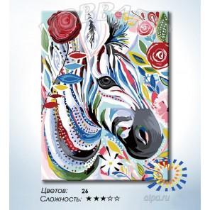 Количество цветов и сложность Красочная зебра Раскраска по номерам на холсте Hobbart HB3040168-LITE