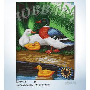 Количество цветов и сложность Утинная идиллия Раскраска по номерам на холсте Hobbart HB3040064