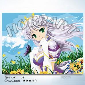 Количество цветов и сложность Принцесса Раскраска по номерам на холсте Hobbart HB3040105