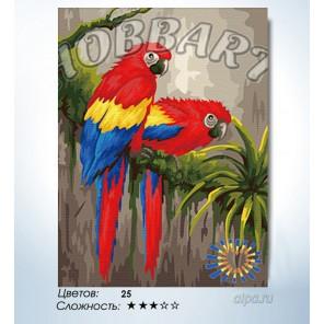 Количество цветов и сложность Яркая пара Раскраска по номерам на холсте Hobbart HB3040119