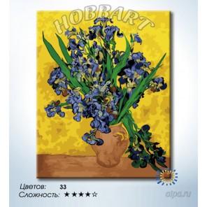 Количество цветов и сложность Ирисы. Ван-Гог Раскраска по номерам на холсте Hobbart DZ4050020-LITE