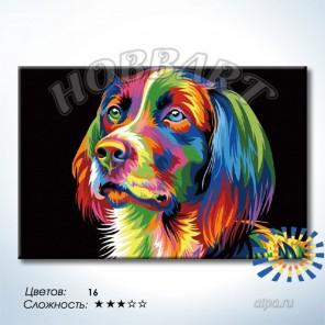 Количество цветов и сложность Радужный пёс. Ваю Ромдони Раскраска по номерам на холсте Hobbart DZ2030006-LITE