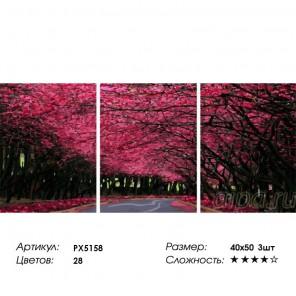 Сложность и количество цветов  Пурпурная аллея Триптих Раскраска по номерам на холсте PX5158