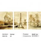 Сложность и количество цветов Париж Триптих Раскраска по номерам на холсте PX5162
