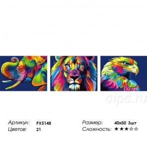 Сложность и количество цветов Радужные звери Триптих Раскраска по номерам на холсте PX5148