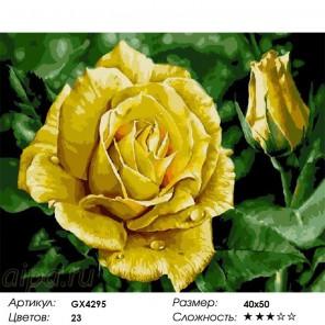 Сложность и количество цветов  Желтая роза Раскраска по номерам на холсте GX4295