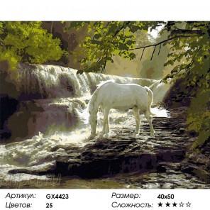 Сложность и количество цветов  Чудесное видение Раскраска по номерам на холсте GX4423