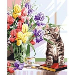 Котенок с ирисами Раскраска по номерам на холсте