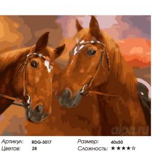Количество цветов и сложность Неразлучные Раскраска картина по номерам на холсте RDG-3017