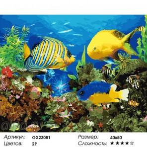 Сложность и количество цветов  Аквариумные рыбки Раскраска по номерам на холсте GX23081