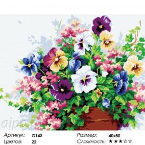 Сложность и количество цветов Анютины глазки в вазе Раскраска по номерам на холсте G143