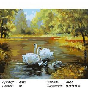 Сложность и количество цветов  Лебеди на осеннем пруду Раскраска по номерам на холсте G312