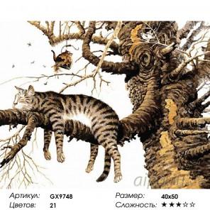 Количество цветов и сложность Отдых кота Раскраска картина по номерам на холсте GX9748
