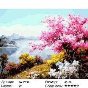 Сакура в цвету Раскраска картина по номерам на холсте
